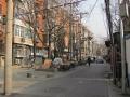 Pekin画像 (3)