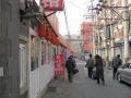 Pekin画像 (22)