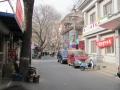 Pekin画像 (9)