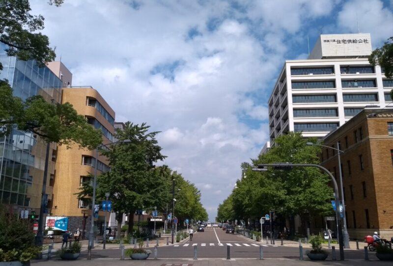 横浜港に向かう官庁街 日本大通り